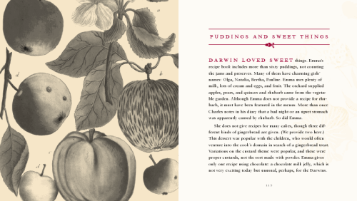 Emma Darwin's cookbook inside 03